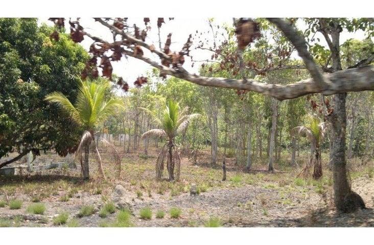 Terreno Panama>San Carlos>San Carlos - Venta:7.000.000 US Dollar - codigo: 17-4767