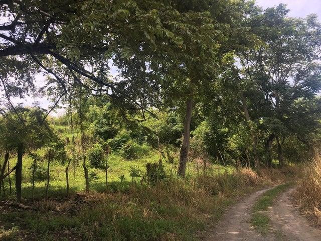 Terreno Panama>San Carlos>San Carlos - Venta:5.720.000 US Dollar - codigo: 18-6356