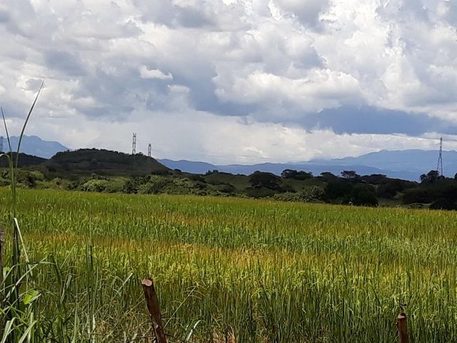 Terreno Veraguas>Santiago>Santiago - Venta:197.787 US Dollar - codigo: 18-6836