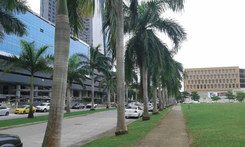 Local comercial Panama>Panama>Costa del Este - Alquiler:30.000 US Dollar - codigo: 18-8481