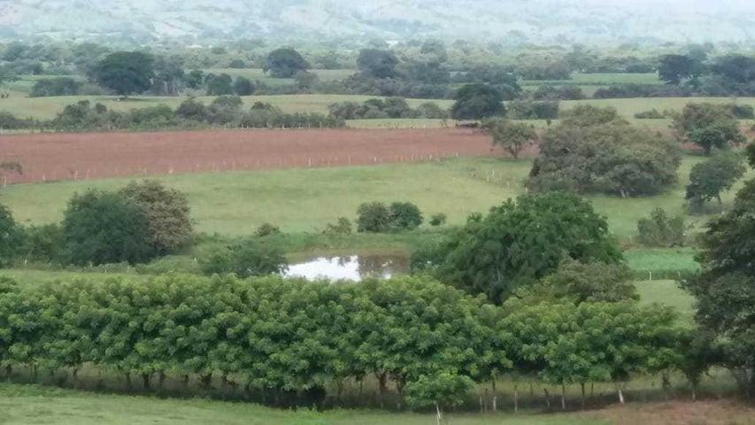 Terreno Los Santos>Las tablas>Las Tablas - Alquiler:323.615 US Dollar - codigo: 18-8778
