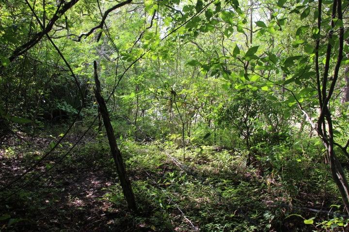 Terreno Panama>Chame>Punta Chame - Venta:6.443.228 US Dollar - codigo: 19-355