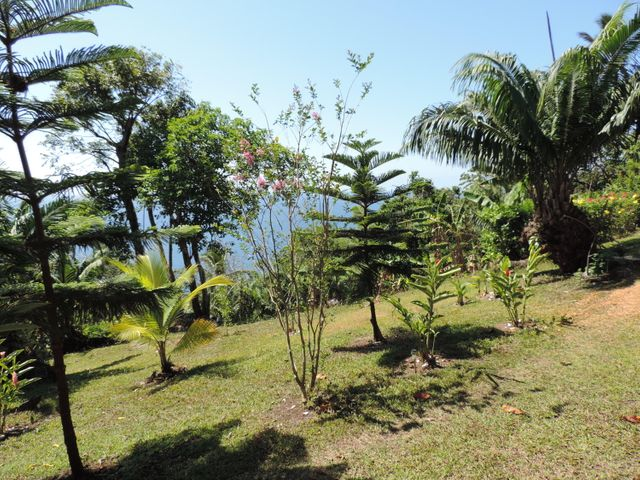 Terreno Colon>Portobelo>Garote - Venta:150.000 US Dollar - codigo: 19-1642
