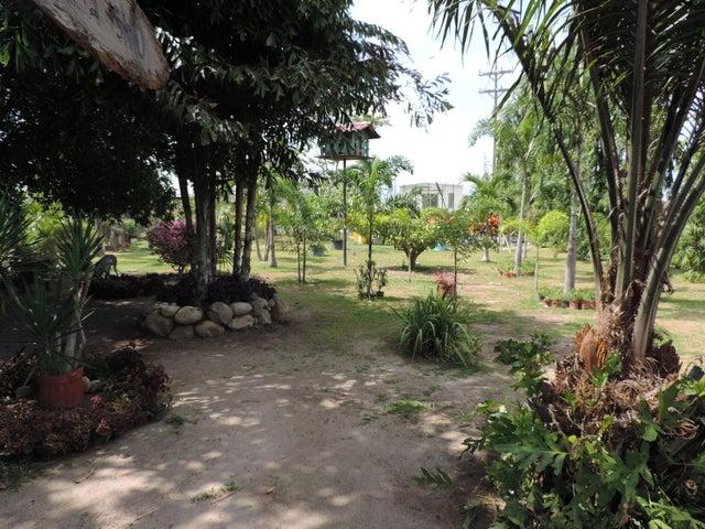 Terreno Panama>San Carlos>San Carlos - Venta:2.900.000 US Dollar - codigo: 19-1650
