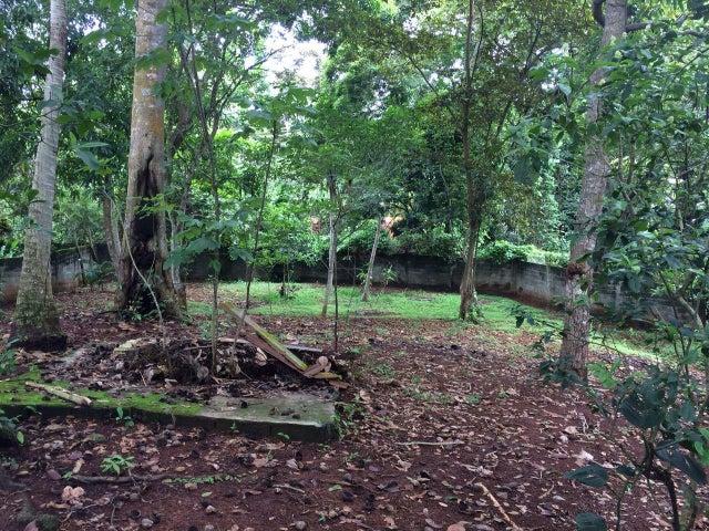 Terreno Panama>La chorrera>Chorrera - Venta:375.000 US Dollar - codigo: 19-2174