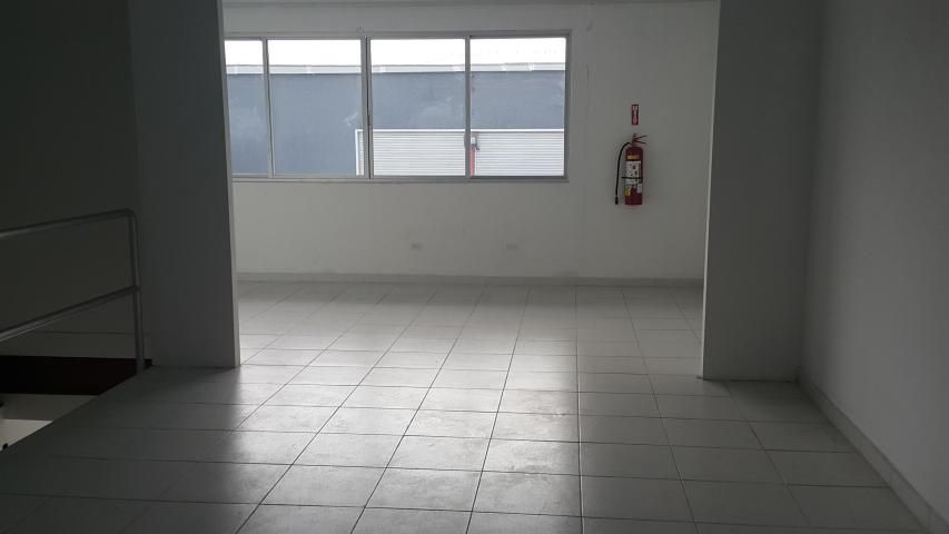 Galera Panama>Panama>Tocumen - Alquiler:2.445 US Dollar - codigo: 19-2956