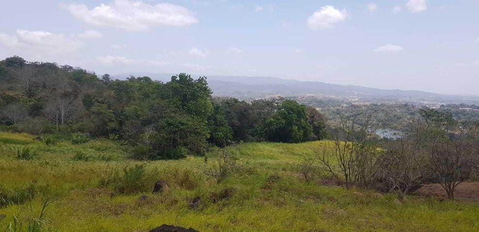 Terreno Panama>Panama>Las Cumbres - Alquiler:375.000 US Dollar - codigo: 19-3025