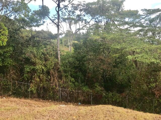 Terreno Panama>Pacora>Cerro Azul - Venta:312.000 US Dollar - codigo: 19-3273