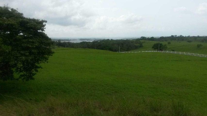 Terreno Panama>La chorrera>Chorrera - Venta:105.000 US Dollar - codigo: 19-3681