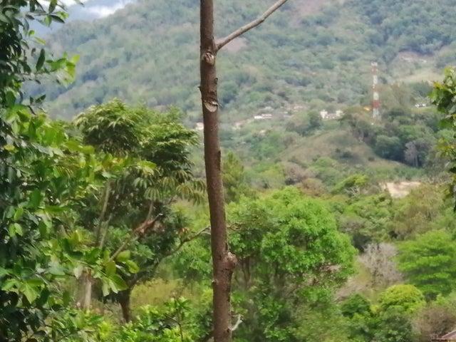Terreno Chiriqui>Boquete>Jaramillo - Venta:374.500 US Dollar - codigo: 19-3884