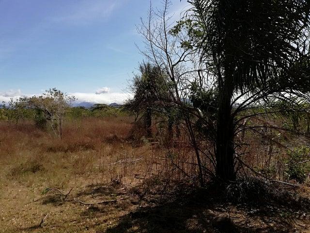 Terreno Chiriqui>Dolega>Dolega - Alquiler:510.352 US Dollar - codigo: 19-4010
