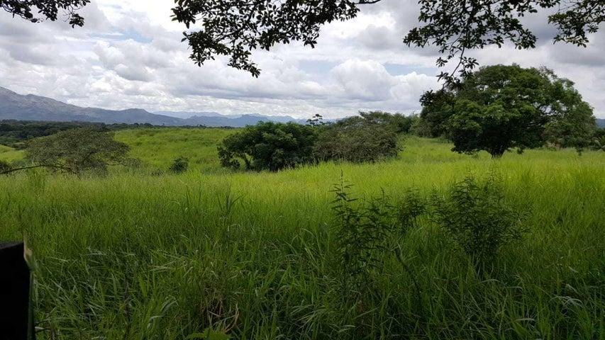 Terreno Panama>Chilibre>Buenos Aires - Alquiler:4.000 US Dollar - codigo: 19-4046