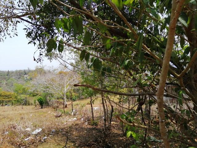 Terreno Panama>Capira>Campana - Venta:40.986 US Dollar - codigo: 19-4243
