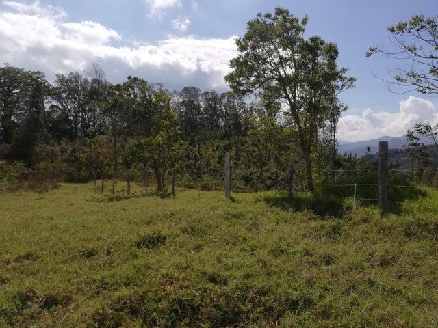 Terreno Chiriqui>Boquete>Jaramillo - Venta:256.000 US Dollar - codigo: 19-4485