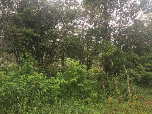Terreno Panama>Panama>Juan Diaz - Alquiler:10.000 US Dollar - codigo: 19-4522