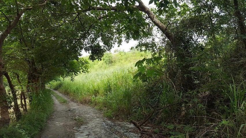 Terreno Panama>San Carlos>San Carlos - Venta:1.250.000 US Dollar - codigo: 19-4765