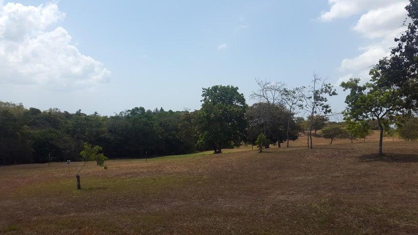 Terreno Panama>San Carlos>San Carlos - Venta:46.893 US Dollar - codigo: 19-6206