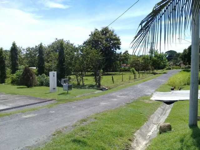 Terreno Panama>Chame>Las Lajas - Venta:70.000 US Dollar - codigo: 19-6543