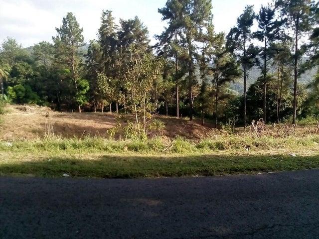 Terreno Panama>Pacora>Cerro Azul - Venta:46.500 US Dollar - codigo: 19-6743