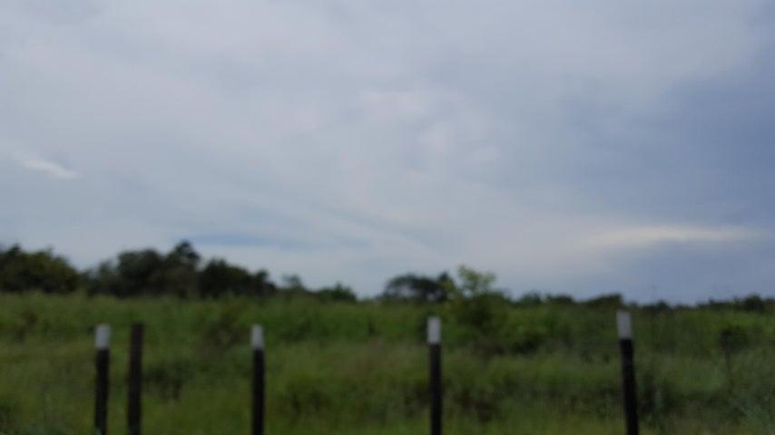 Terreno Cocle>Rio Hato>Buenaventura - Venta:7.650.000 US Dollar - codigo: 19-7150