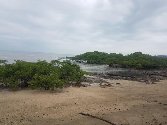 Casa Panama>Arraijan>Veracruz - Venta:599.000 US Dollar - codigo: 19-7364