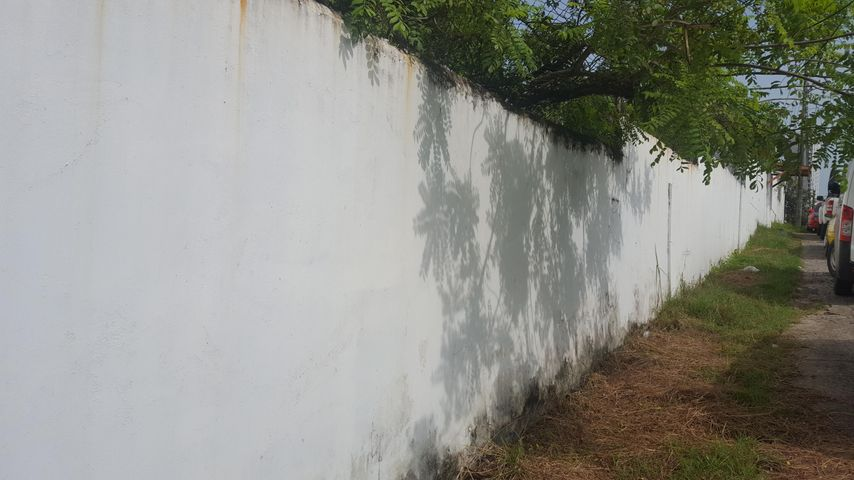 Terreno Panama>Panama>Parque Lefevre - Alquiler:5.000 US Dollar - codigo: 19-7493