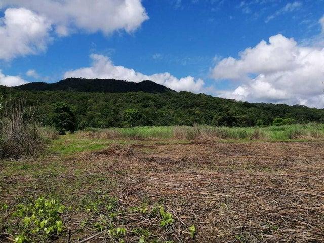 Terreno Panama>Chepo>Las Margaritas - Venta:150.000 US Dollar - codigo: 19-8331