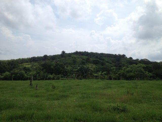 Terreno Panama>La chorrera>Chorrera - Venta:505.000 US Dollar - codigo: 19-8695
