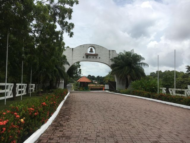 Terreno Panama>Chame>Coronado - Venta:58.000 US Dollar - codigo: 19-6241