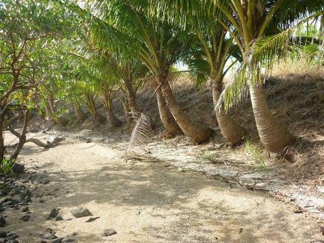 Terreno Bocas del Toro>Bocas del Toro>Bocas del Toro - Venta:500.000 US Dollar - codigo: 19-8633