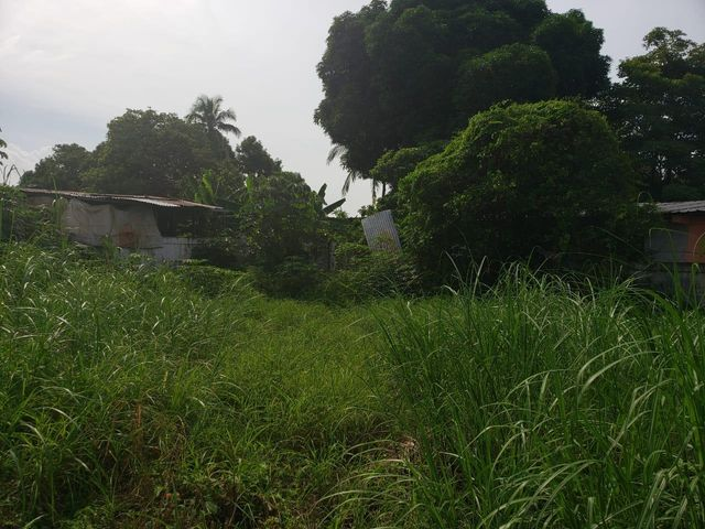Terreno Panama>Panama>Juan Diaz - Venta:250.000 US Dollar - codigo: 19-11237