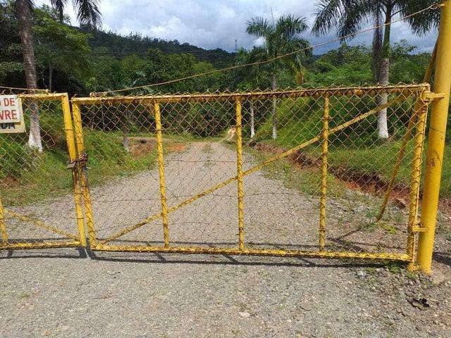 Terreno Panama>Chilibre>Chilibre Centro - Venta:180.000 US Dollar - codigo: 19-11407