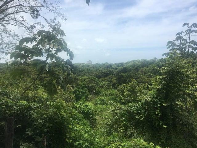 Terreno Panama>San Carlos>San Carlos - Venta:5.500.000 US Dollar - codigo: 19-12067