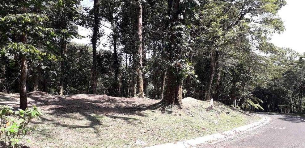 Terreno Panama>Chame>Sora - Venta:97.000 US Dollar - codigo: 19-12356