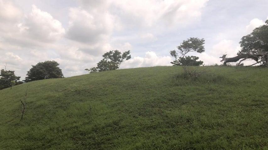 Terreno Panama>La chorrera>Chorrera - Venta:100.000 US Dollar - codigo: 19-12470