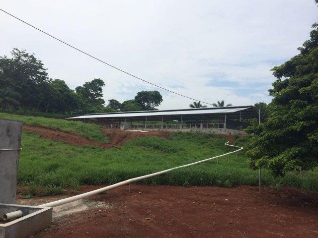 Terreno Panama>La chorrera>Chorrera - Venta:275.000 US Dollar - codigo: 20-1221