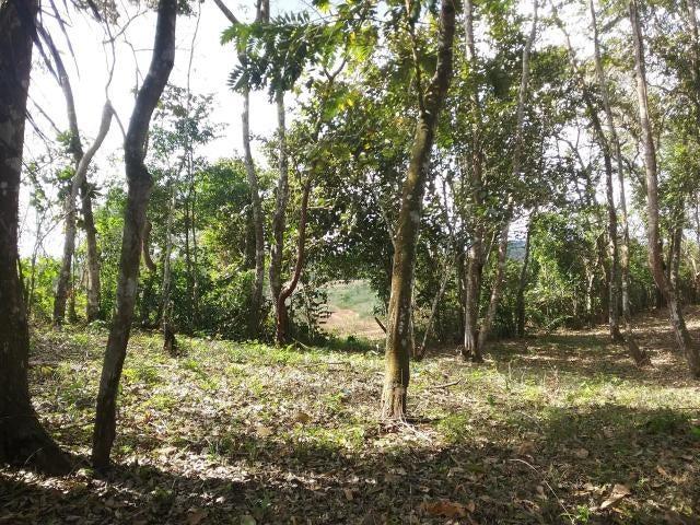 Terreno Panama>La chorrera>Chorrera - Venta:80.000 US Dollar - codigo: 20-1790