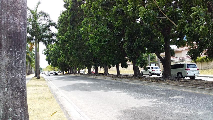 Local Comercial Panama>Panama>Costa del Este - Alquiler:6.000 US Dollar - codigo: 20-2930