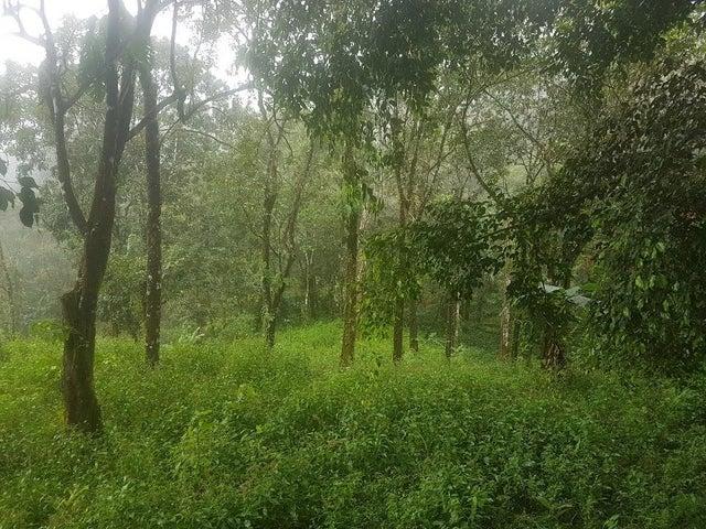 Terreno Panama>Pacora>Cerro Azul - Venta:50.000 US Dollar - codigo: 20-4806