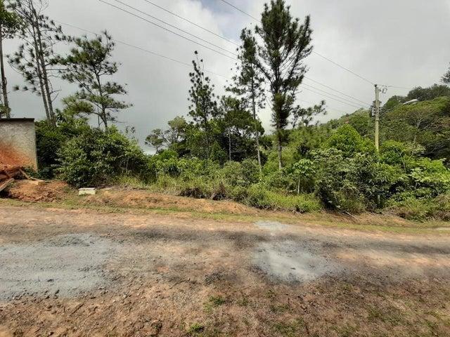 Terreno Panama>Chilibre>Chilibre Centro - Venta:59.000 US Dollar - codigo: 20-5890