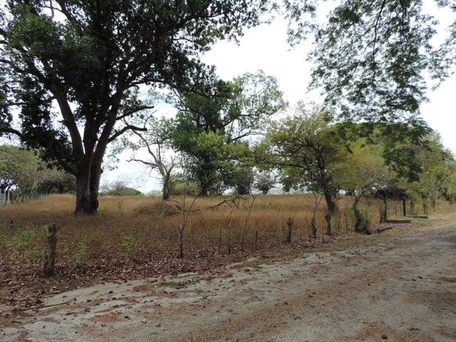 Terreno Panama>San Carlos>San Carlos - Venta:380.000 US Dollar - codigo: 20-8368