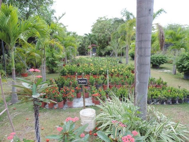 Terreno Panama>San Carlos>San Carlos - Venta:2.900.000 US Dollar - codigo: 20-8372