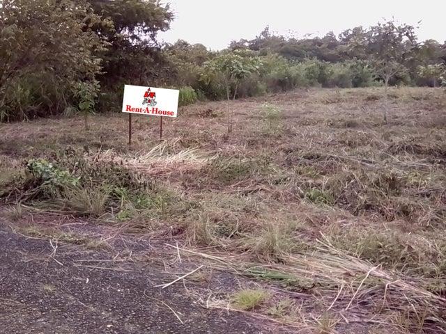 Terreno Panama>Pacora>Cerro Azul - Venta:165.000 US Dollar - codigo: 20-10300