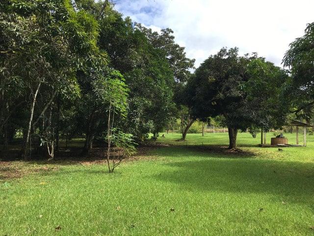 Terreno Panama>La chorrera>Chorrera - Venta:389.000 US Dollar - codigo: 20-10726