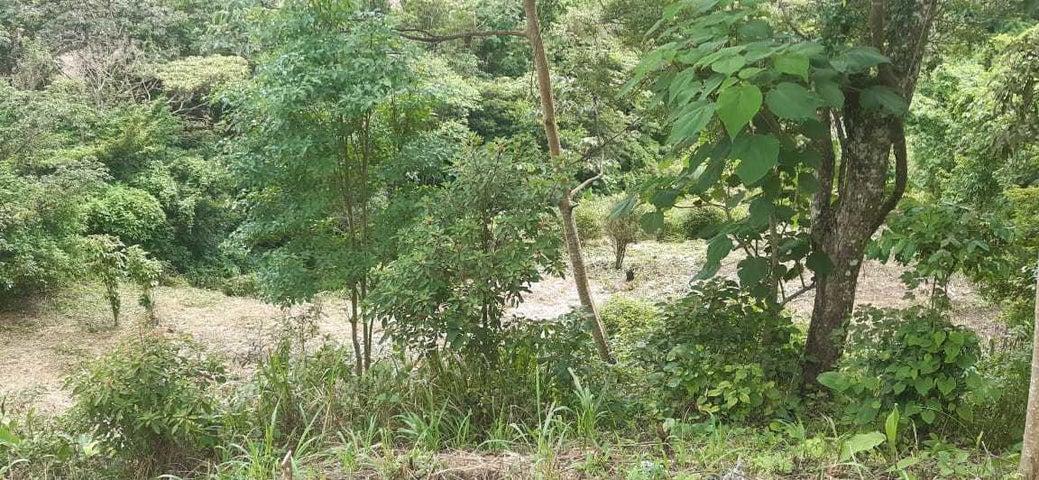 Terreno Panama>San Carlos>San Carlos - Venta:110.000 US Dollar - codigo: 20-10856