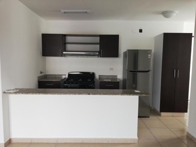 Apartamento Panama>Panama>El Cangrejo - Alquiler:900 US Dollar - codigo: 20-11162
