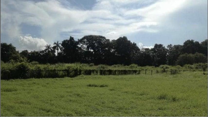 Terreno Chiriqui>Chiriqui>Chiriqui - Alquiler:7.500 US Dollar - codigo: 21-612