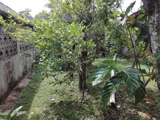 Casa Panama>Panama>Las Cumbres - Venta:180.000 US Dollar - codigo: 21-1087