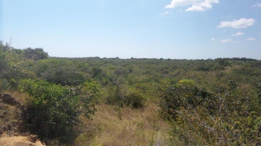 Terreno Panama>San Carlos>San Carlos - Venta:15.000.000 US Dollar - codigo: 21-1123