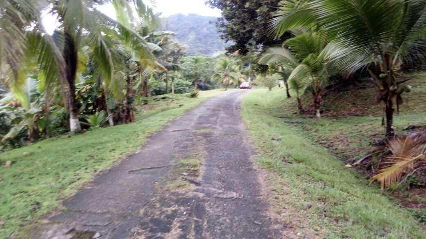 Terreno Panama>Panama>Las Cumbres - Venta:736.000 US Dollar - codigo: 21-1703